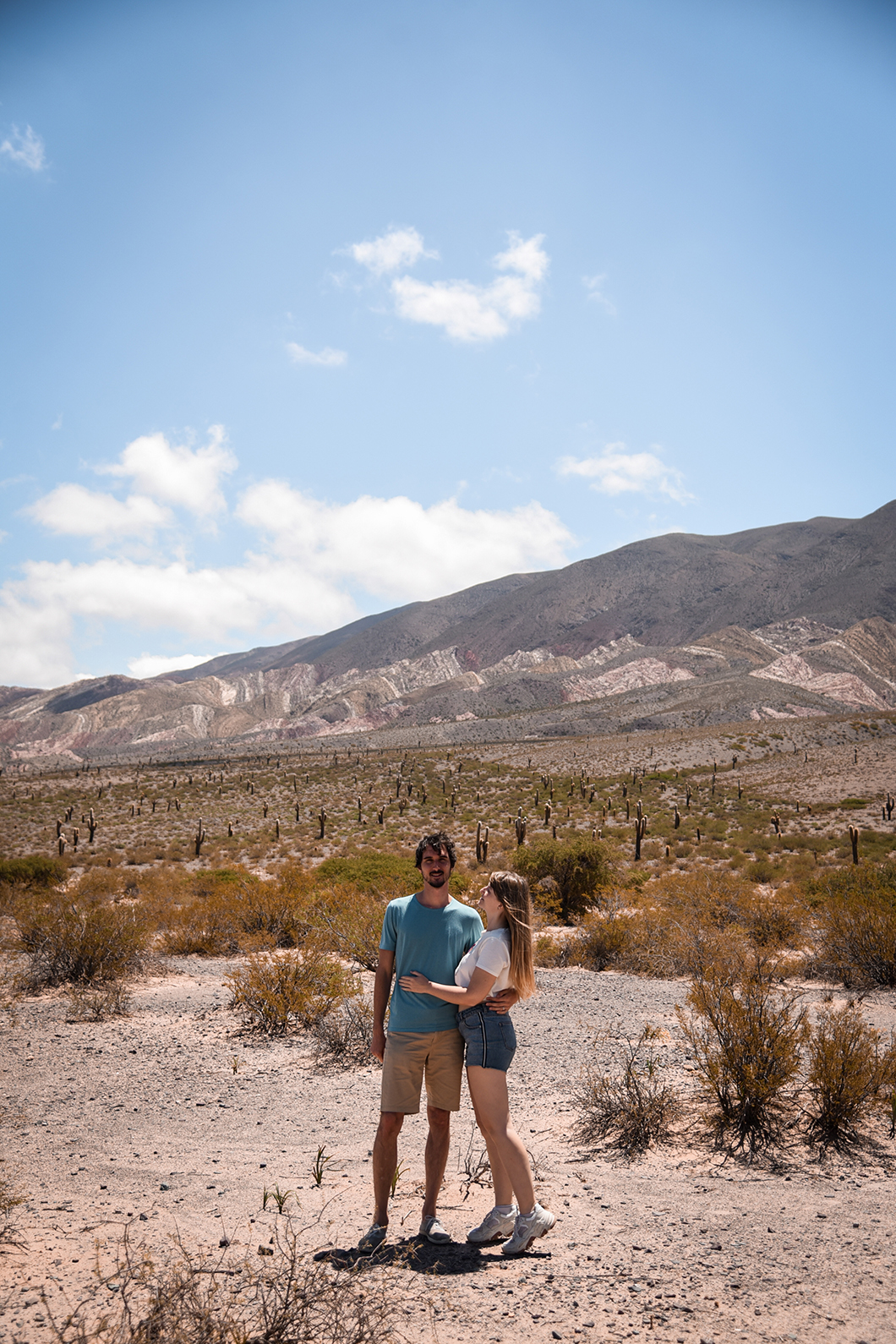 Roadtrip au Parque national Los Cardones