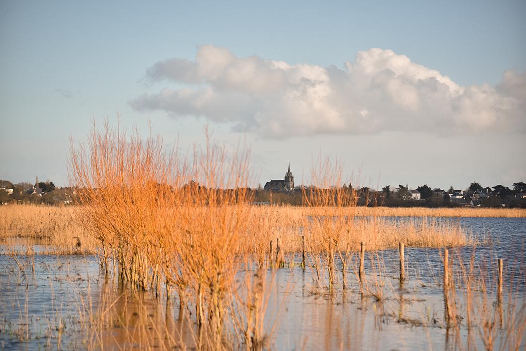 Loire Atlantique 46