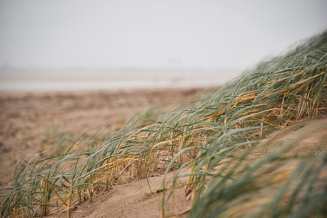 Loire Atlantique 17
