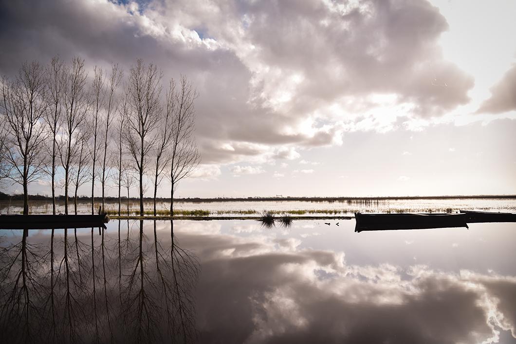 Loire Atlantique 33