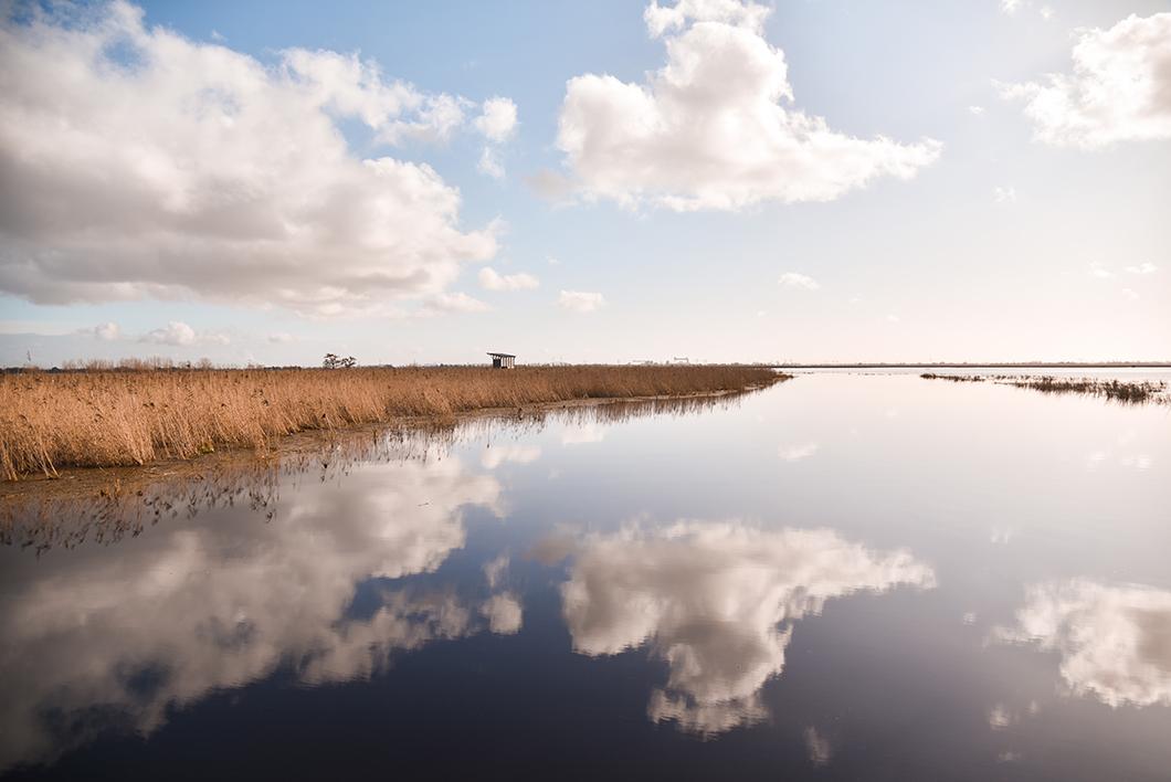 Loire Atlantique 38
