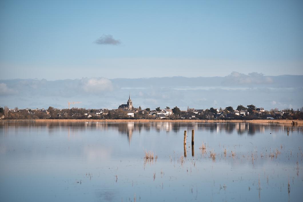 Loire Atlantique 37