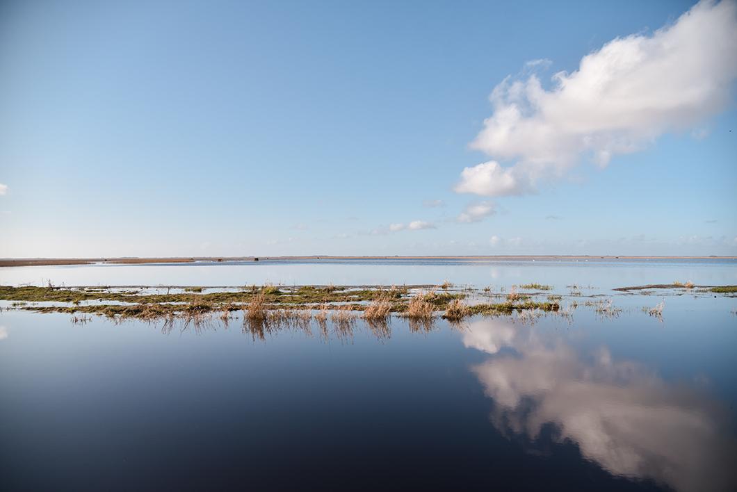 Loire Atlantique 41