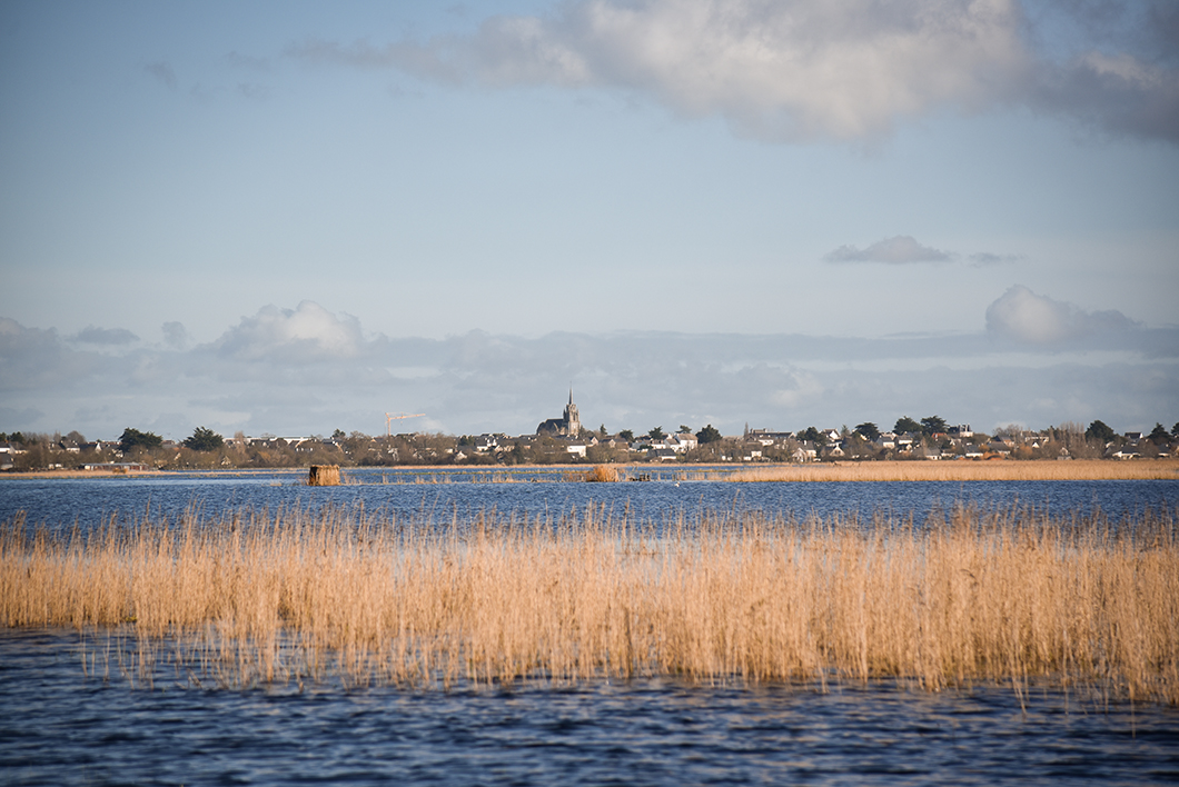 Loire Atlantique 43