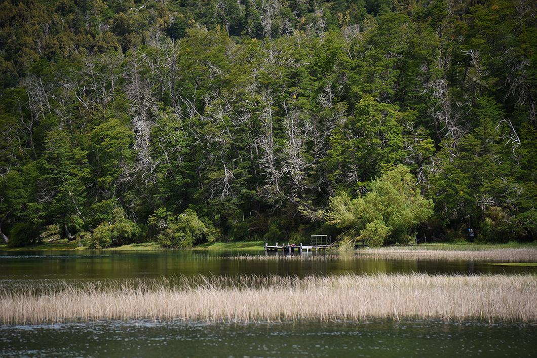 Les incontournables de la route des 7 lacs à Bariloche