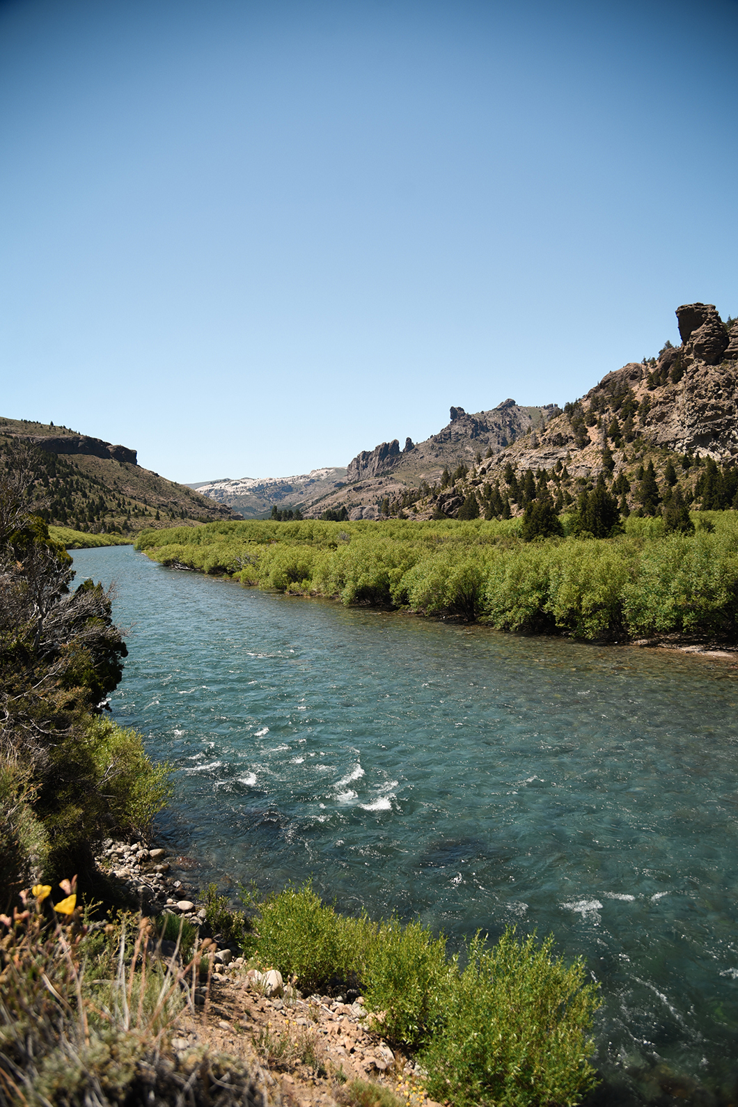 Les paysages de la région de Bariloche en Argentine