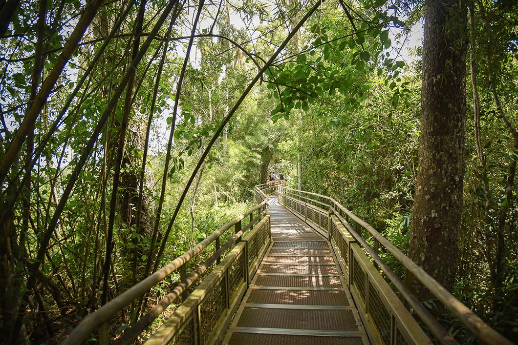 Randonnée à Iguazu