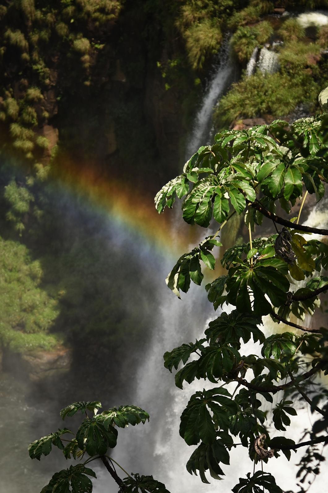 Arc en ciel aux chutes d'Iguazu