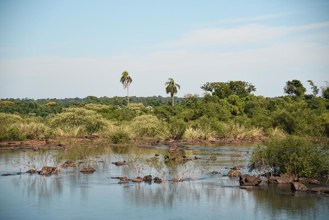Visite du parc d'Iguazu en Argentine