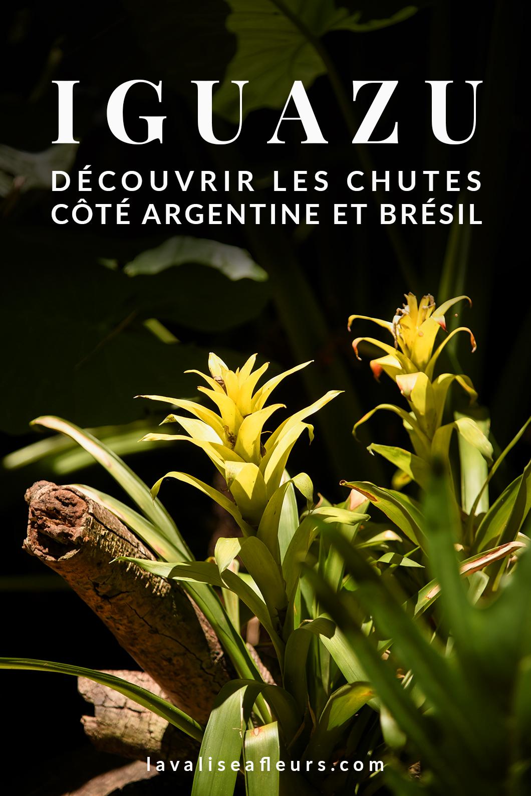 Découvrir les chutes d'iguazu côté argentine et brésil