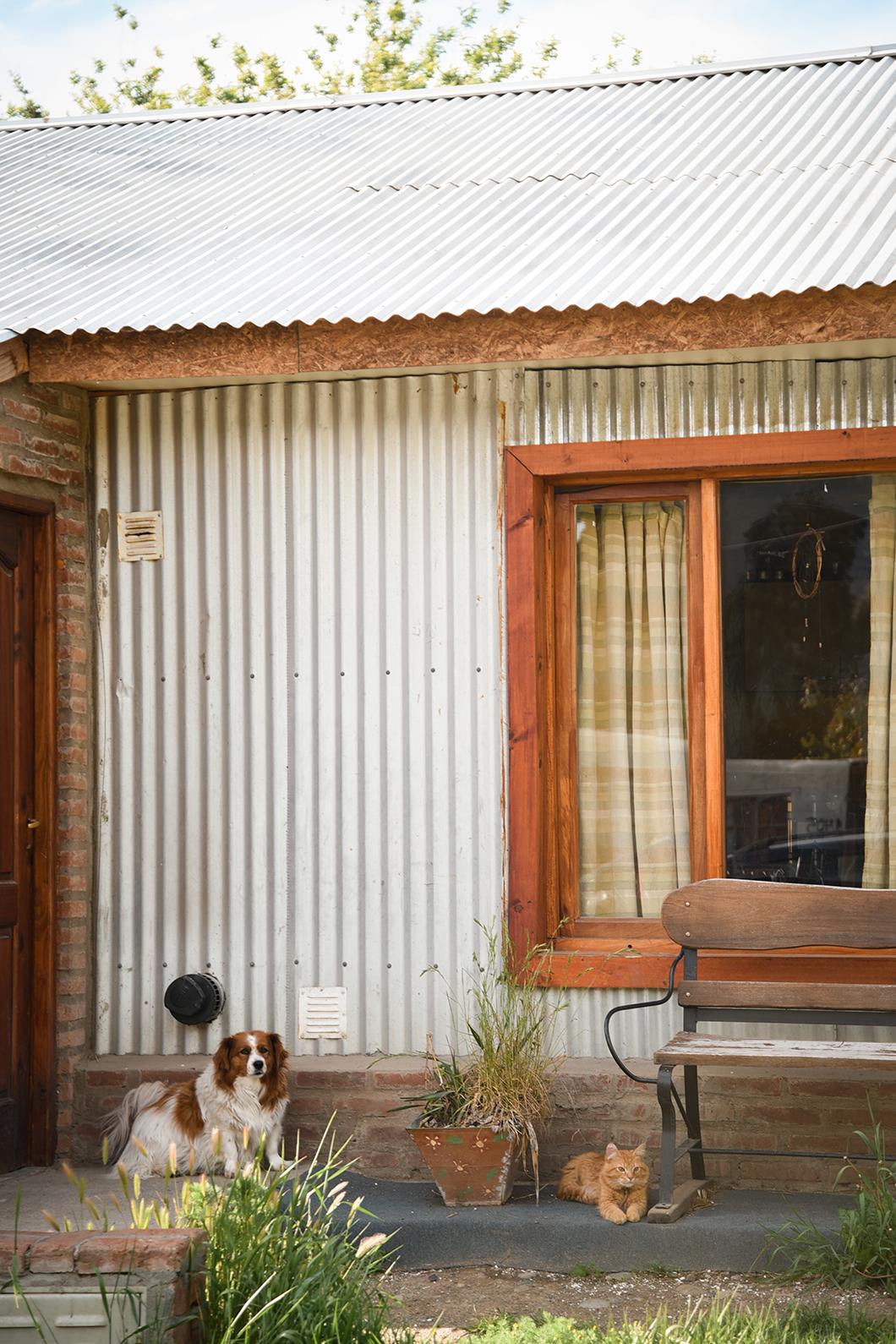 El Calafate en Patagonie, guide des activités