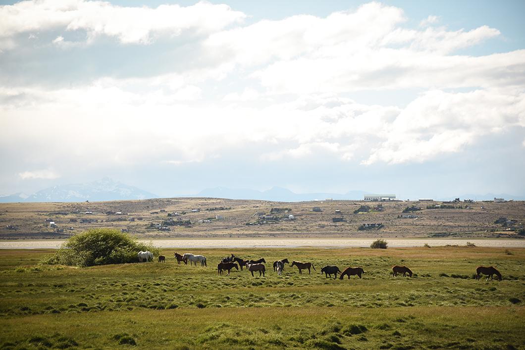 Les plus beaux paysages d'Argentine, El Calafate et ses glaciers