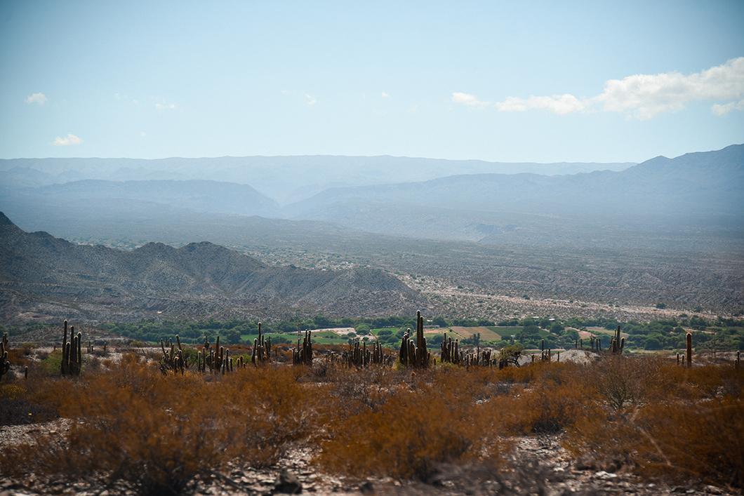Visiter les Vallées Calchaquies près de Salta