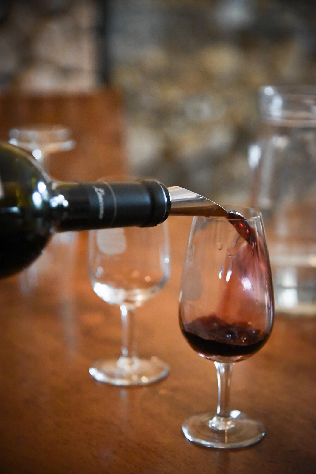 Dégustation de vin au Vignoble Piattelli