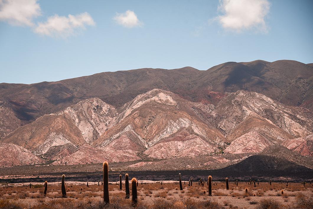 Les montagnes du Parc National Los Cardones