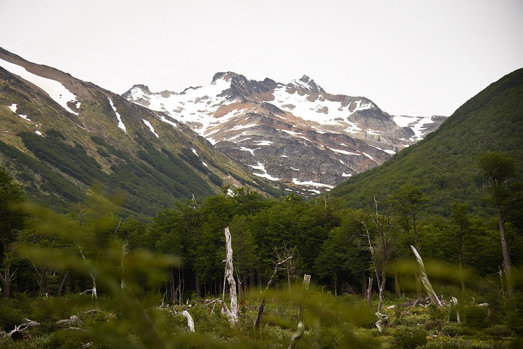 La Laguna Esmeralda, randonnée incontournable à Ushuaia