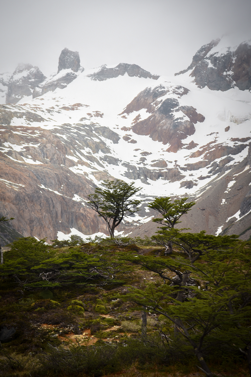 Découvrir Ushuaia et la Laguna Esmeralda
