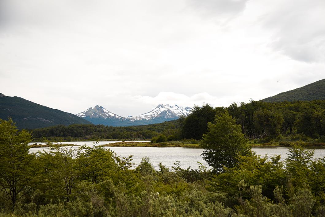 Parc National Terre de Feu à Ushuaia
