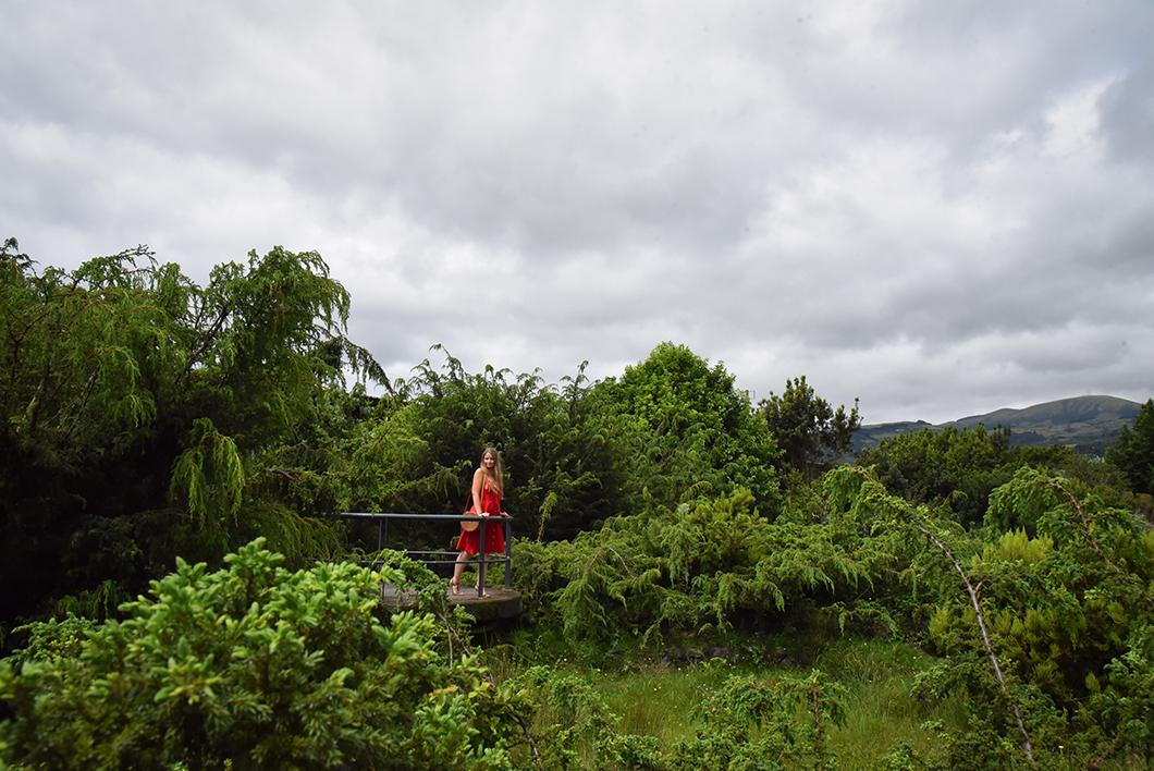 Le jardin botanique, incontournable à Faial