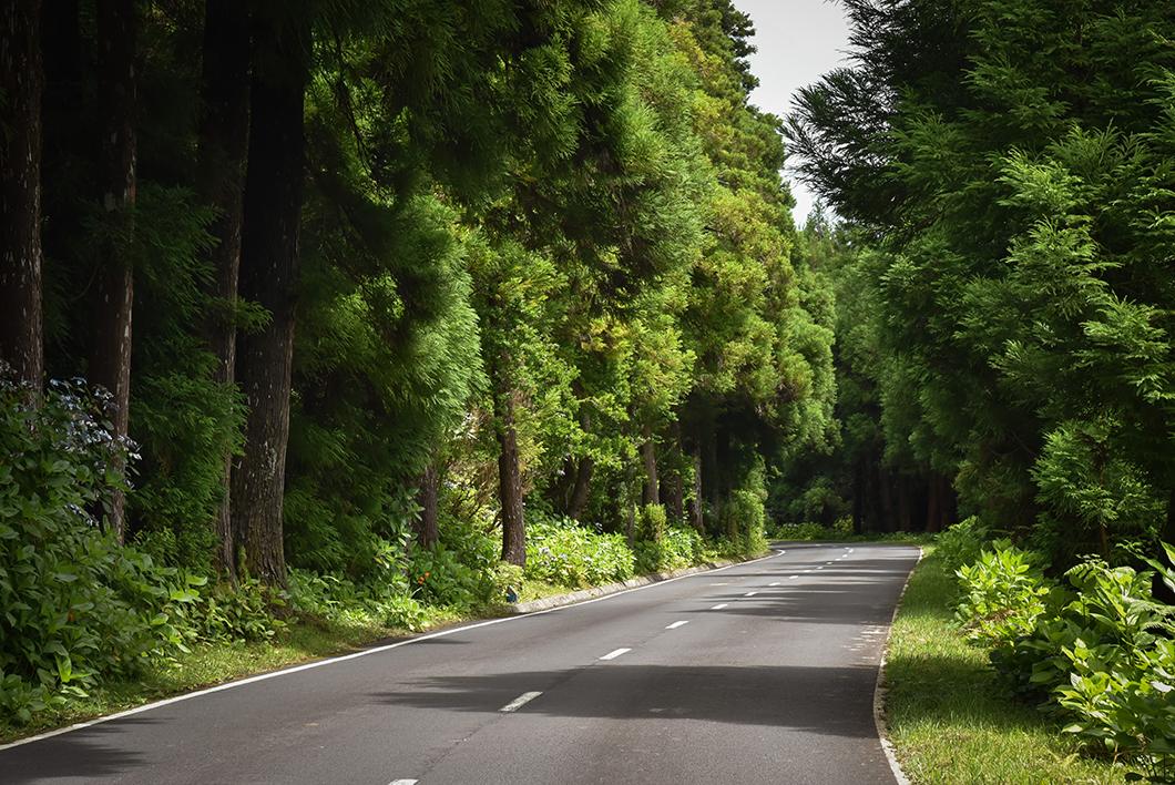 Les jolies routes de Faial
