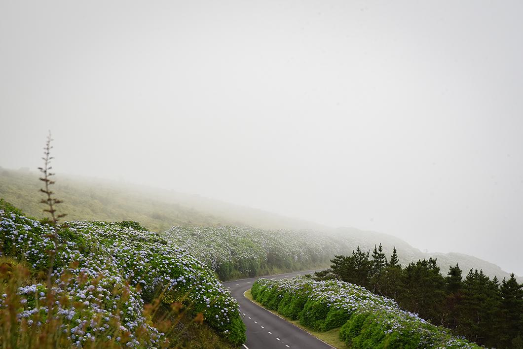 La Caldeira, randonnée à faire dans les Açores au Portugal