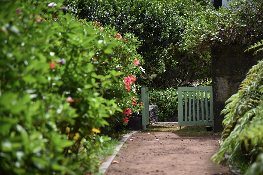 Jardin Boanique dans les Açores au Portugal