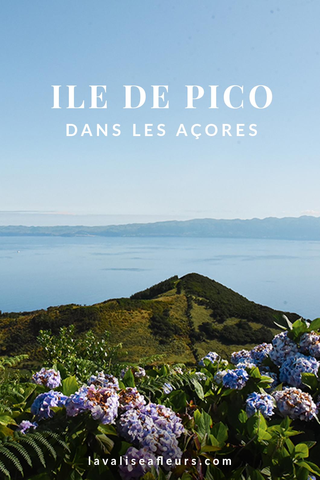 Ile de Pico dans les Açores