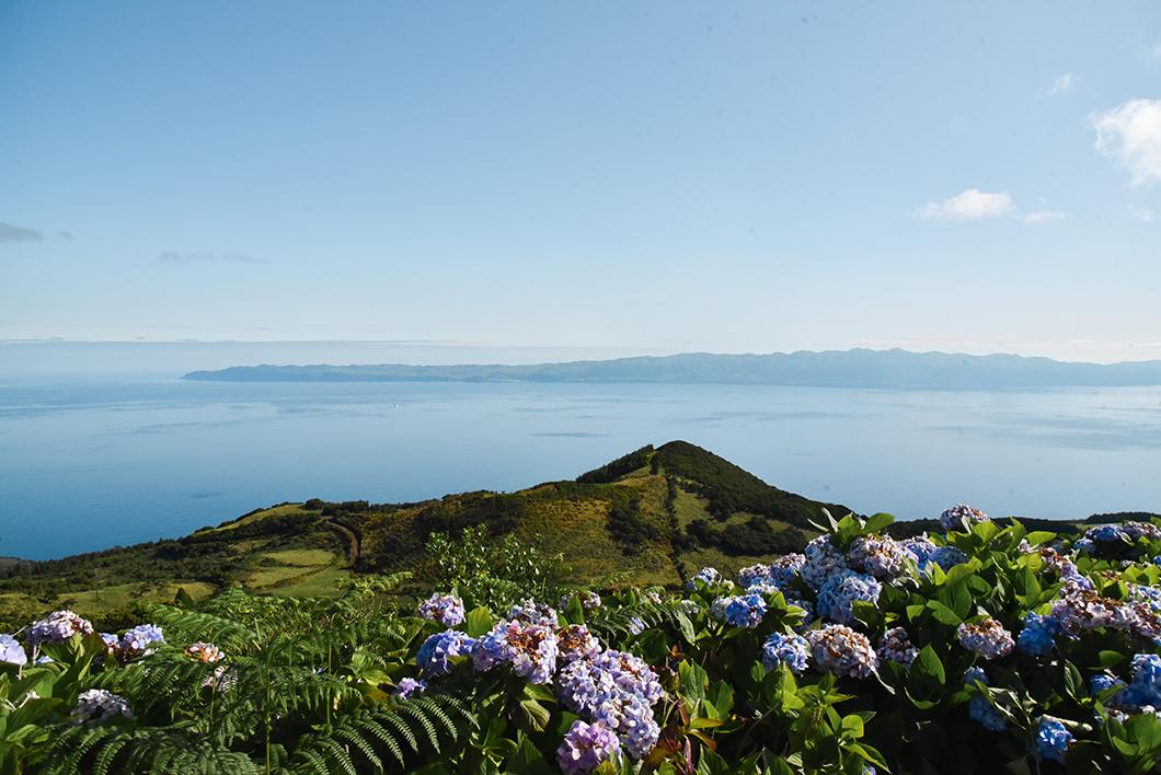 Vue sur l'océan à Pico dans les Açores