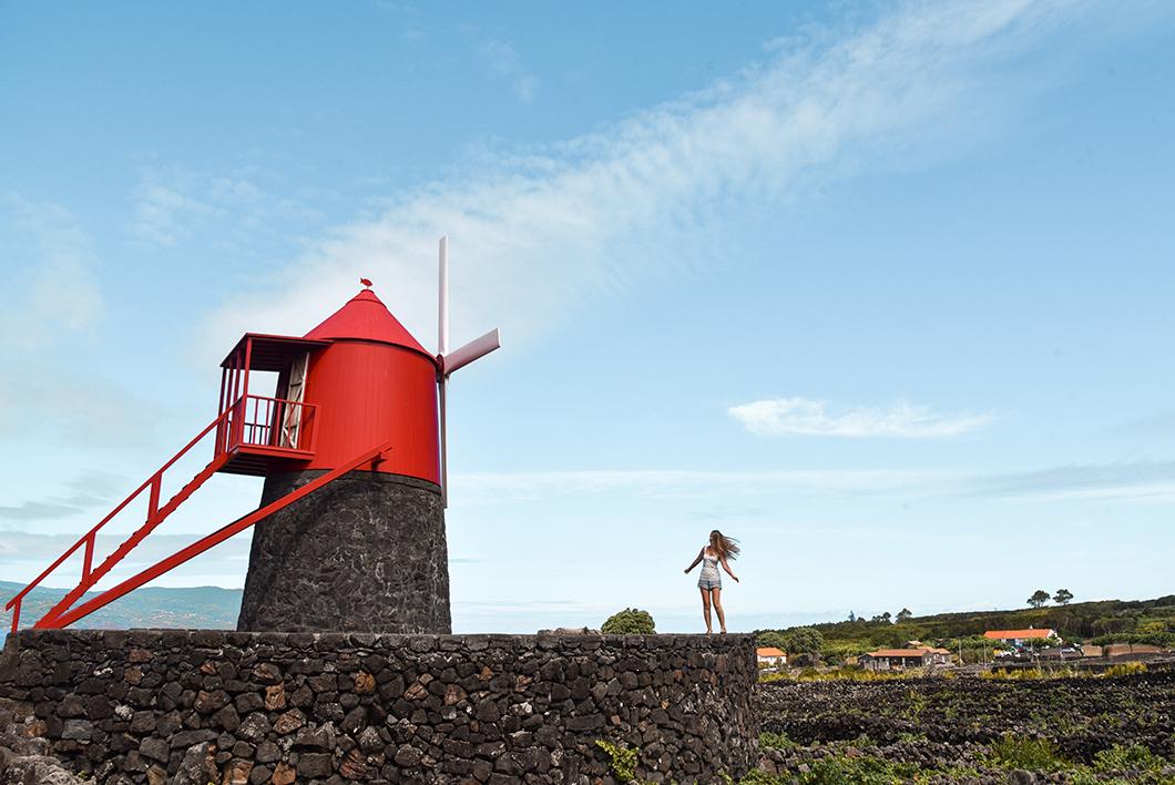 Les moulins de Pico, visite incontournable dans les Açores