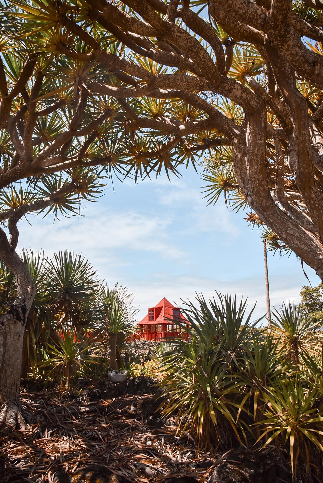 Visiter le Musée du Vin à Pico au Portugal