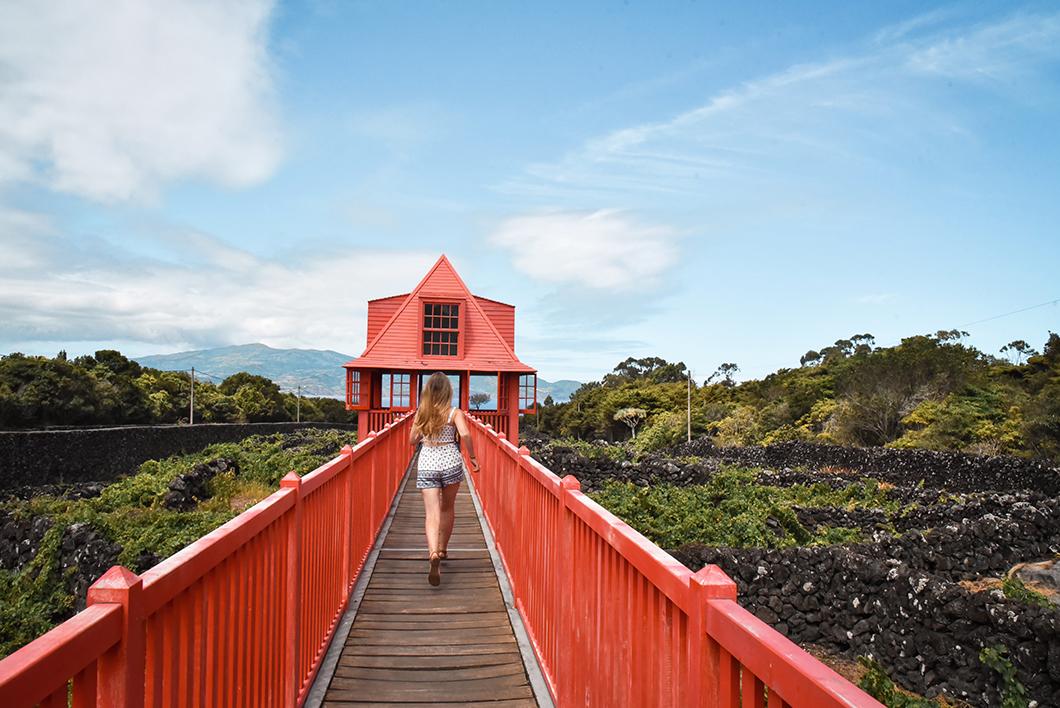 Découvrir le Musée du Vin sur l'île de Pico