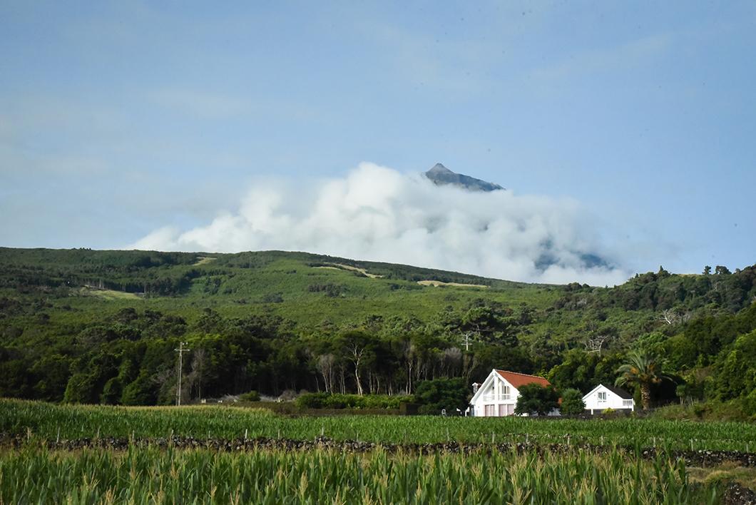 Observer le Mont Pico dans les Açores