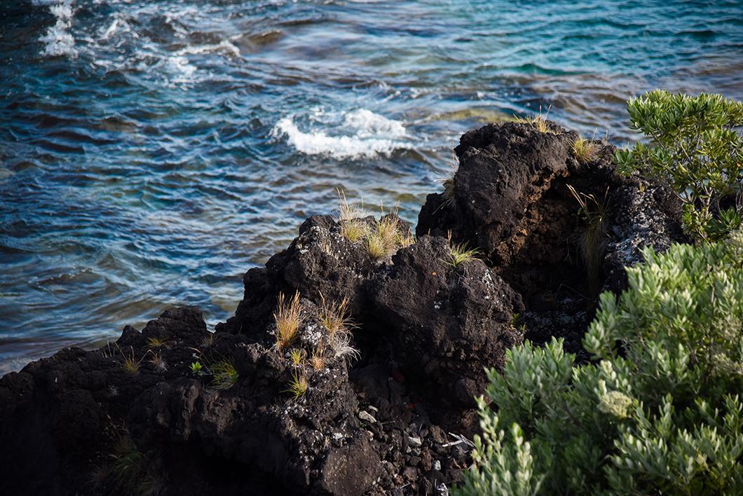 Que faire dans les Açores ? Découverte de l'île de Pico