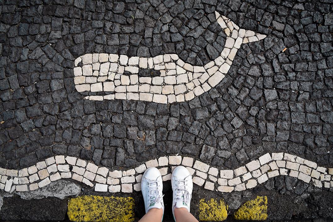 Que faire à Sao Roque dans les Açores ?