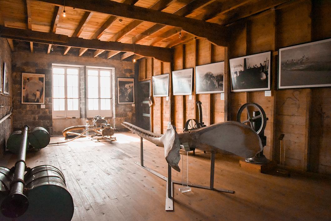 Visiter le musée de la baleine à Pico dans les Açores au Portugal