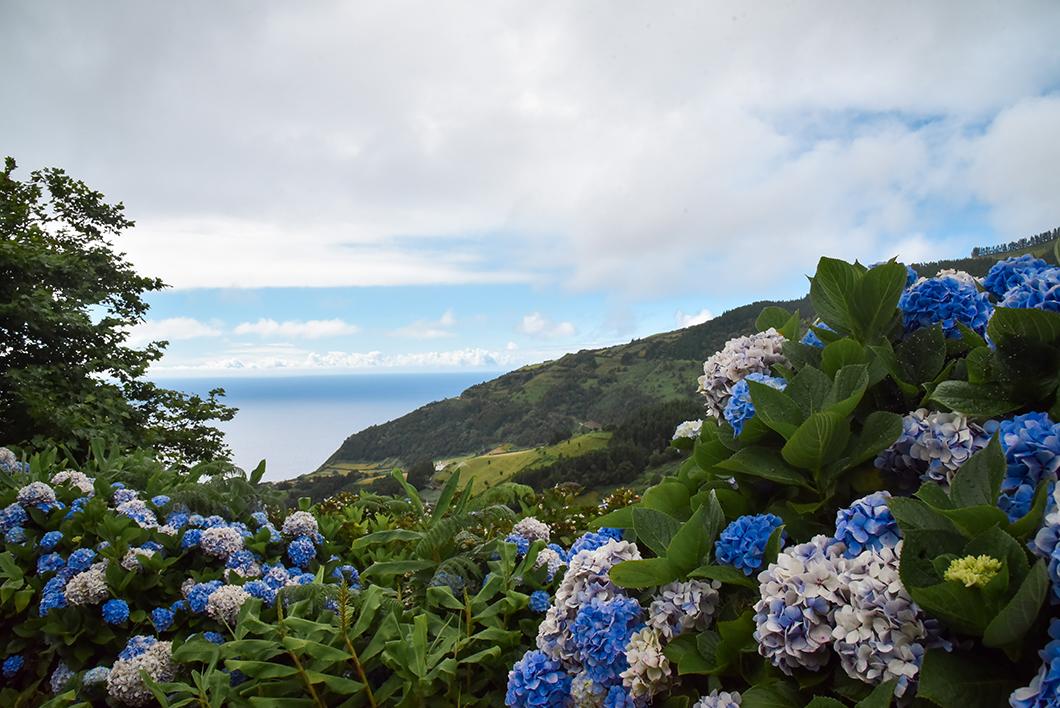 Randonnée dans les Cascades de l'île de Sao Miguel
