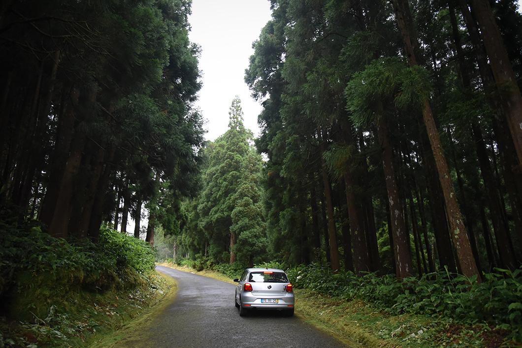 Road trip sur l'île de Sao Miguel dans les Açores pour admirer ses points de vue