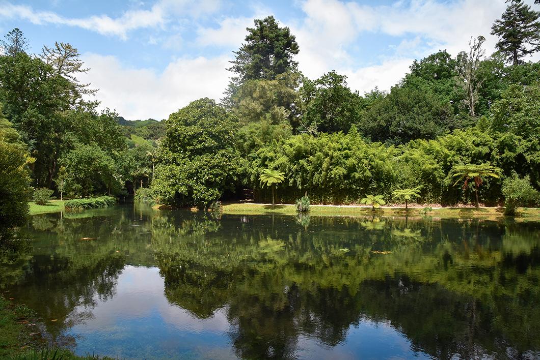 Les jolis parcs de Sao Miguel dans les Açores