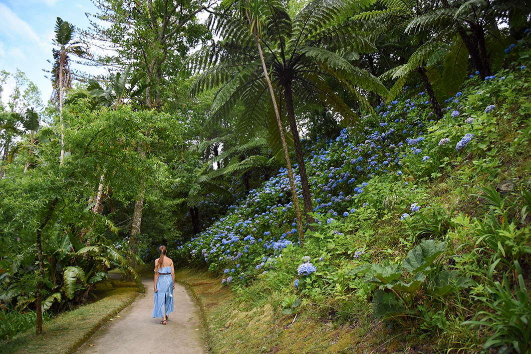 Balade dans le parc Terra Nostra à Sao Miguel