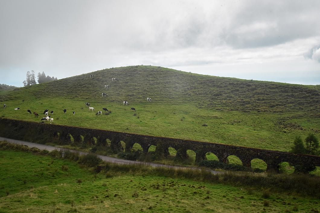 Se balader aux lacs de l'île de Sao Miguel, activité incontournable dans les Açores