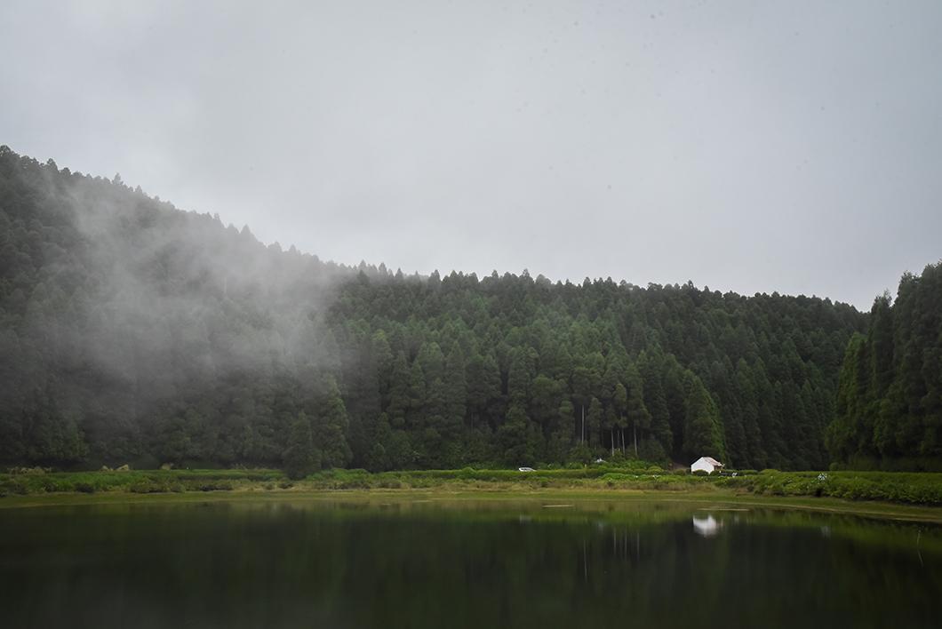 Balade dans les au lagoa das Empadadas, lagoa Rasa et Lagoa de Eguas jusqu'au Viewpoint Pico Paúl