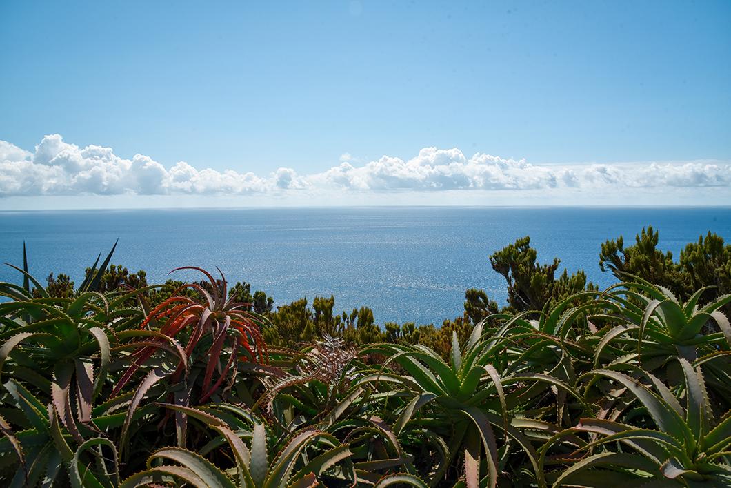 Visiter Ferraria et ses piscine naturelles, activités incontournables sur l'île de Sao Miguel dans les Açores