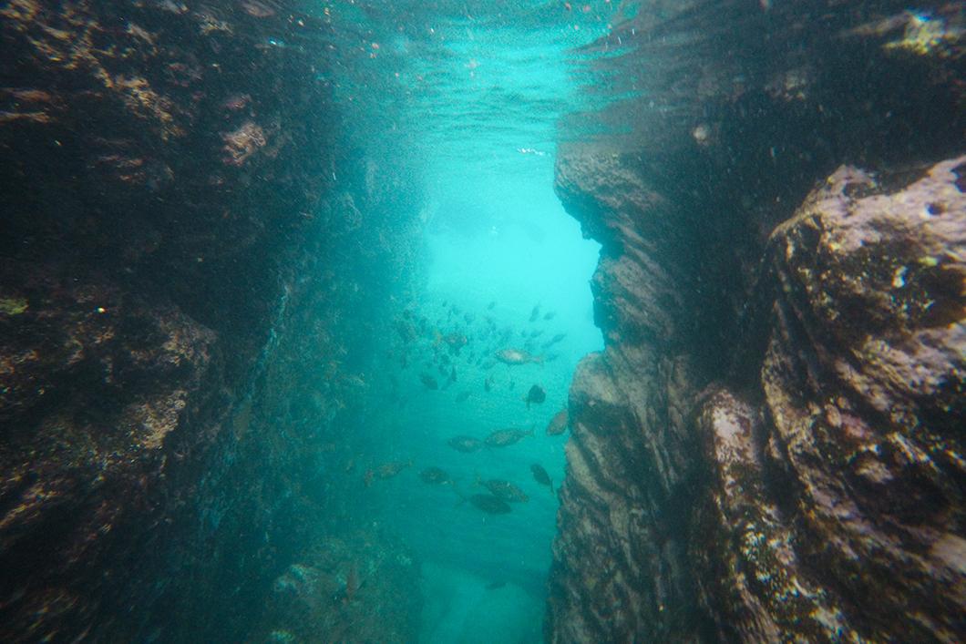 Plongée avec la compagnie Espírito Azul