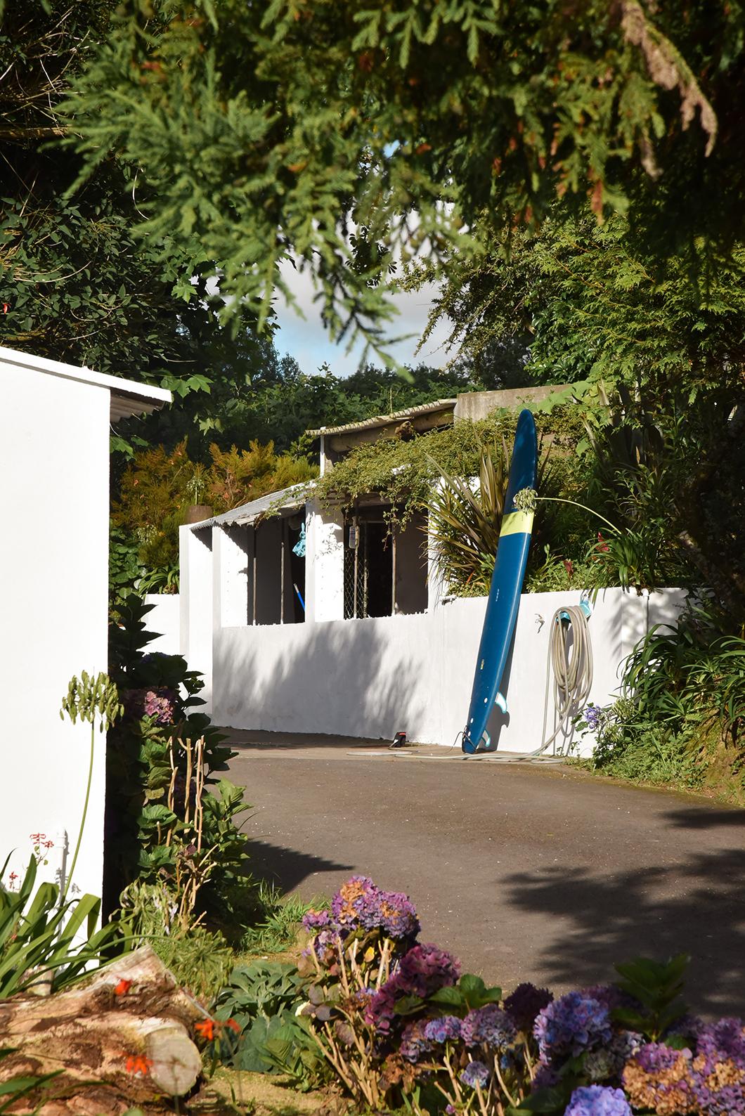 La fabrique de thé Gorreana, incontournables à Sao Miguel dans les Açores