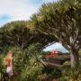 Visite de l'ile de Pico dans les Açores