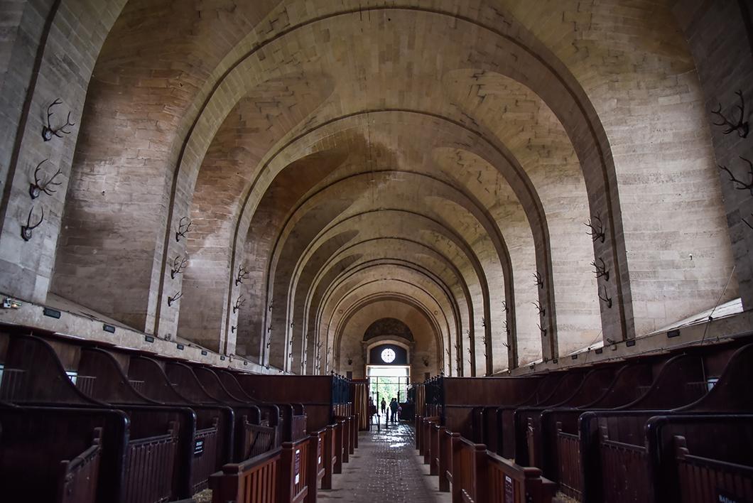 Visiter les Grandes Écuries dans le Domaine e Chantilly