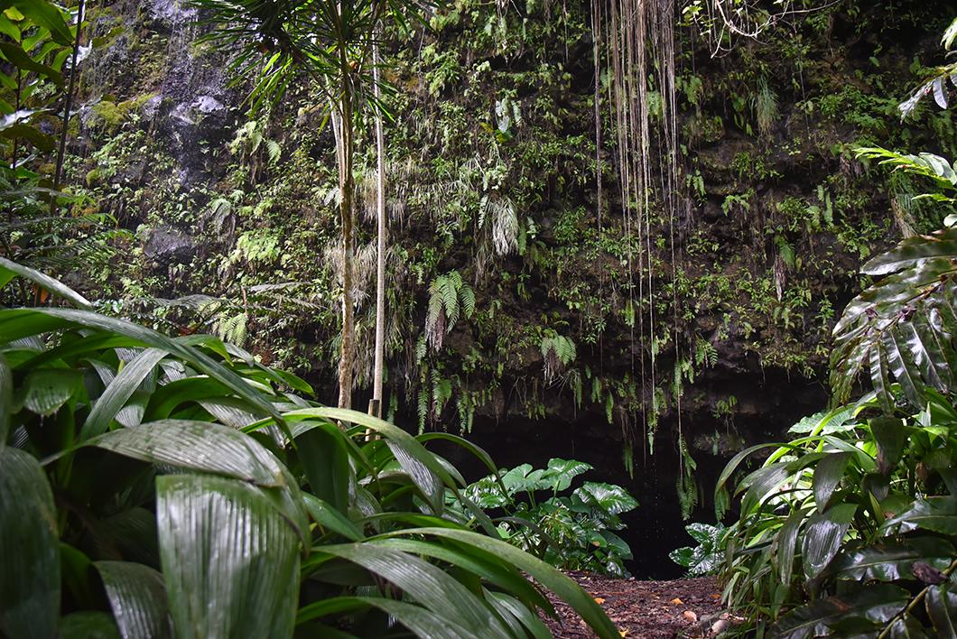 Que faire à Tahiti ? La Grotte de Maraa