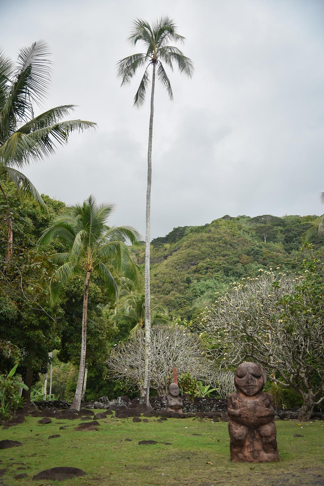 Visite du Mara Arahurahu à Tahiti