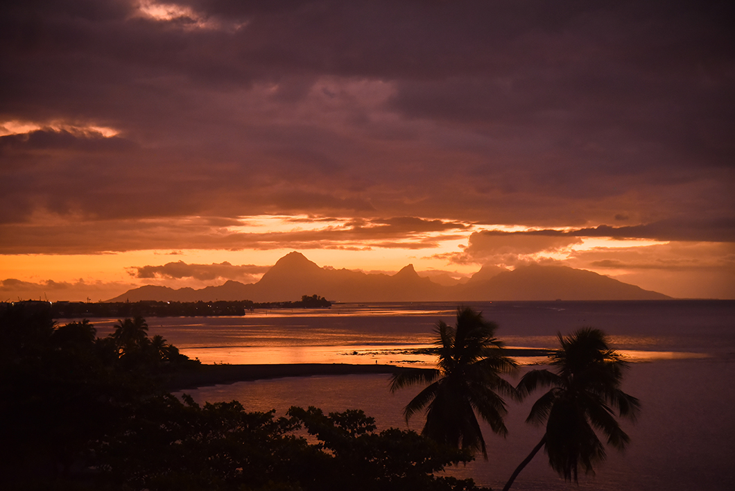 Nos bars préférés à Tahiti, le Bay Bardu Tahiti Pearl Beach