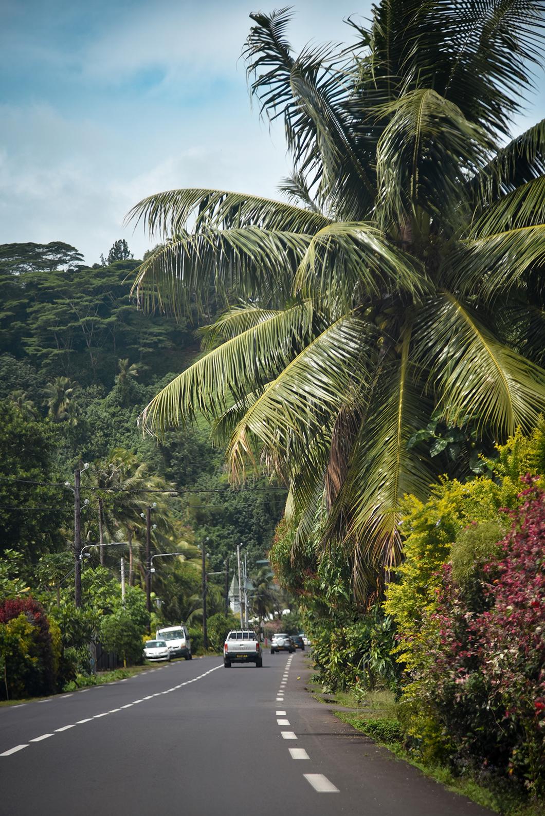 Admirer les points de vue depuis les belvédères à Tahiti
